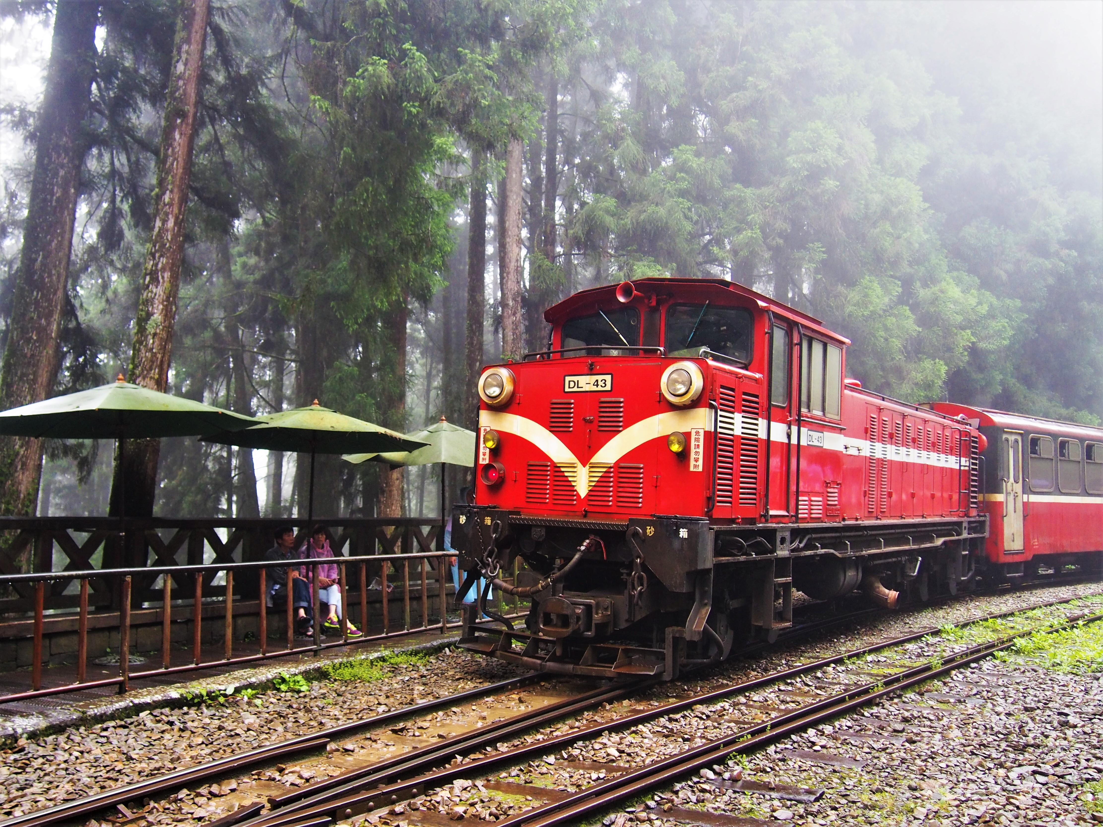 2021春節連假玩法推薦-阿里山小火車